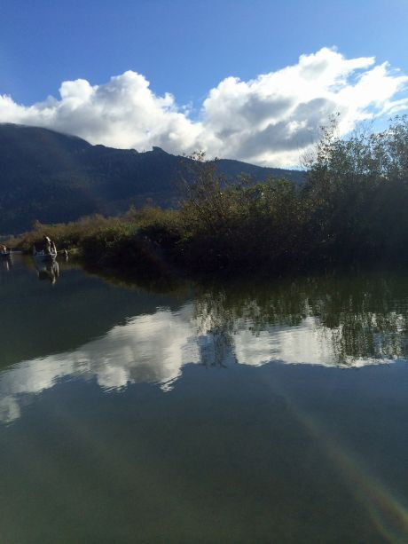 harrison_river_2014-24