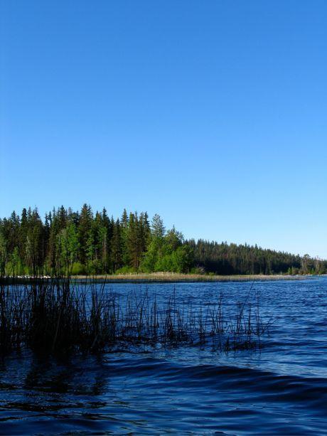 Roche_Lake_2008_01-59
