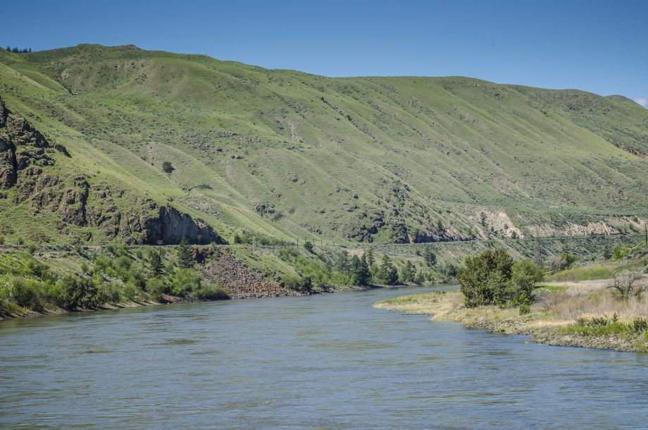 thompson_river_2017-1-33