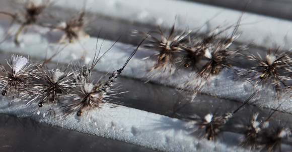 Stillwater dry flies :: The LOONS Flyfishing Club