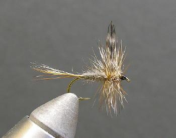 Adams Dry :: The LOONS Flyfishing Club