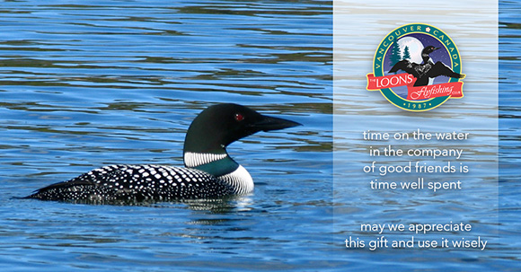 Loon on favoured water :: The LOONS Flyfishing Club
