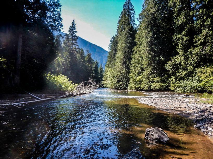 skagit_river_2015-11
