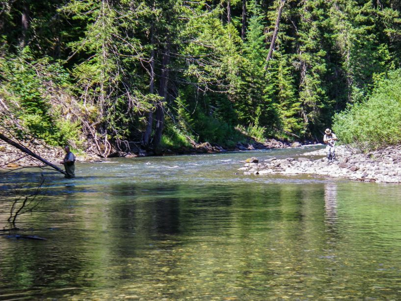 skagit_river_2015-7