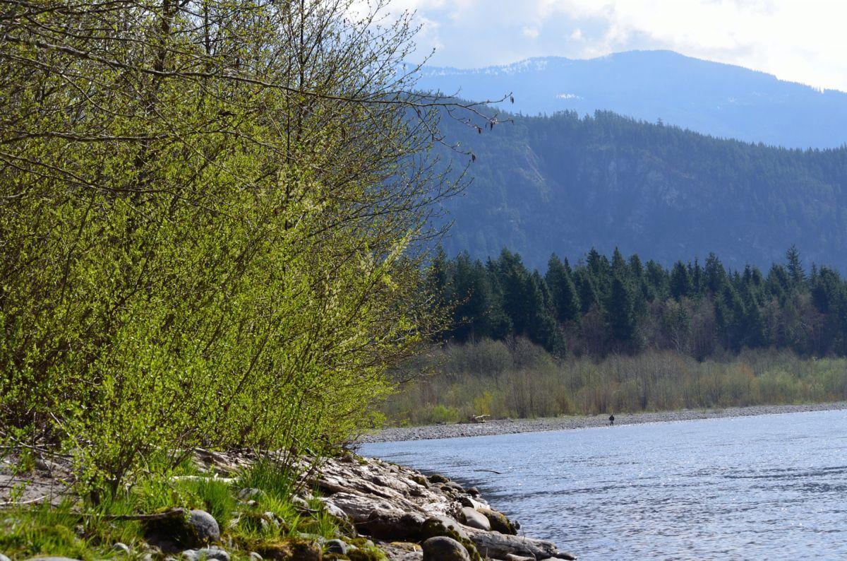 Squamish-Fishout-050-2012