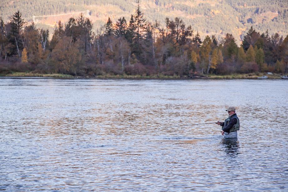 4867HL C Wesson Fishing Run on Harrison River